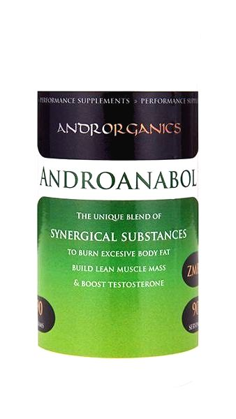 Androanabol - Androrganics 90 g